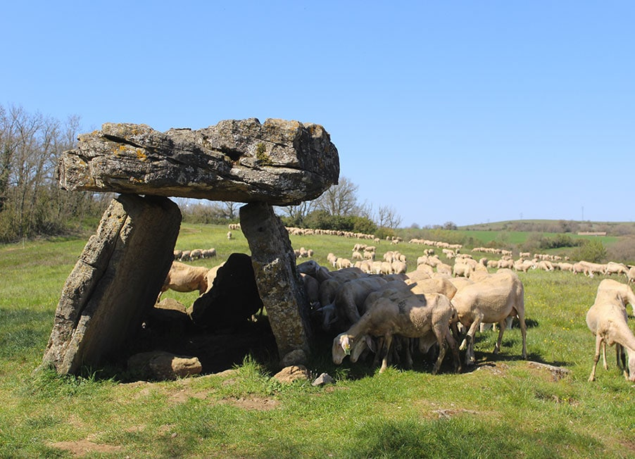dolmen histoire terroir